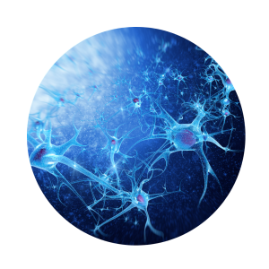 Neurons on a blue background